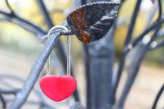 Красный замок в форме сердца висит на ветви железного декабря Стоковые Фотографии RF