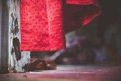 Красный занавес в ветре стоковое фото rf