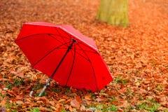 Красный зонтик в парке осени на ковре листьев Стоковые Фото