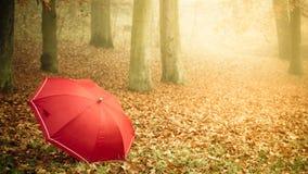 Красный зонтик в парке осени на ковре листьев Стоковые Изображения RF