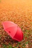 Красный зонтик в парке осени на ковре листьев Стоковое Изображение RF