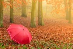 Красный зонтик в парке осени на ковре листьев Стоковые Изображения