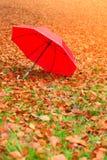 Красный зонтик в парке осени на ковре листьев Стоковое фото RF