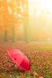 Красный зонтик в парке осени на ковре листьев Стоковые Фотографии RF