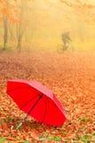 Красный зонтик в парке осени на ковре листьев Стоковое Изображение