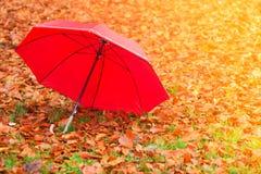 Красный зонтик в парке осени на ковре листьев Стоковое Фото