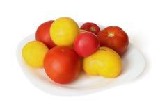 Красный и желтый томат на тарелке Стоковые Фото