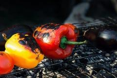 Красный и желтый перец, баклажан, томат на гриле решетки Стоковое фото RF