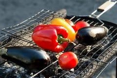 Красный и желтый перец, баклажан, томат на гриле решетки Стоковое Фото