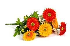 Красный и желтый цветок Стоковое Изображение