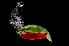Красный и зеленый перец стоковое изображение rf
