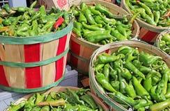 Красный и зеленый Chili в корзинах бушеля для продажи Стоковое Фото