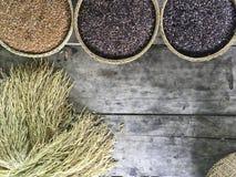 Красный и черный органический коричневый рис в круглым корзине сплетенной ротангом Стоковые Изображения