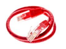 Красный кабель сети UTP при соединитель RJ45 изолированный на белизне Стоковые Фотографии RF