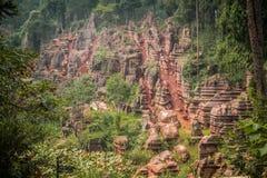 Красный каменный лес Стоковое фото RF