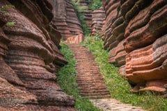 Красный каменный лес Стоковые Фотографии RF