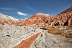Красный каньон в пустыне стоковое фото