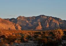 Красный каньон утеса Стоковая Фотография