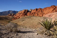 Красный каньон утеса Стоковые Фото