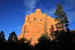 Красный каньон стоковые изображения rf