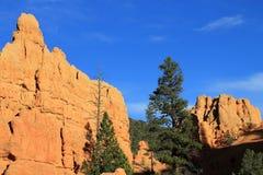 Красный каньон стоковое фото