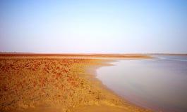 Красный ковер Dongying Стоковые Изображения RF