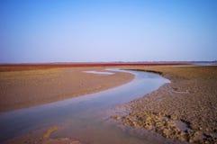 Красный ковер Dongying Стоковое Фото