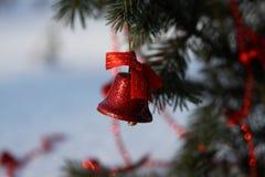 Красный колокол на ветви рождественской елки Стоковое Фото