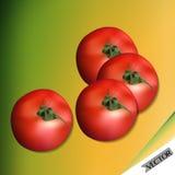 Красный комплект томата Стоковое Фото