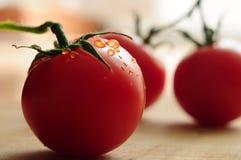 Красный конец-вверх томата Стоковое Изображение