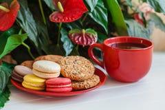 Красный кофе чашки, печенья, macaroons, цветки на белом деревянном t Стоковое Фото