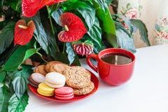 Красный кофе чашки, печенья, macaroons, цветки на белом деревянном t Стоковое Изображение