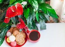 Красный кофе чашки, печенья, macaroons, цветки на белом деревянном t Стоковые Фото