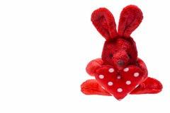 Красный кролик для валентинки Стоковая Фотография