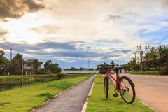 Красный круг велосипеда на траве в деревне сада Стоковые Изображения RF