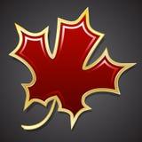 Красный кленовый лист в золотом отрезке Изолированный предмет вектор Стоковая Фотография RF