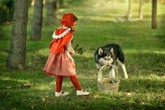 Красный клобук катания и серый волк в лесе Стоковые Изображения