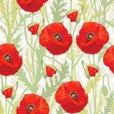 Красный мак - безшовная картина Стоковое фото RF