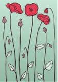 Красный мак бесплатная иллюстрация
