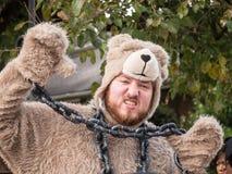 Красный медведь гонок импровизированной трибуны Bull Стоковая Фотография