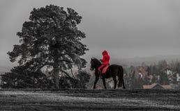 Красный наездник на горе Стоковое Изображение RF
