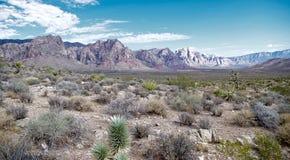 Красный национальный парк каньона утеса, Невада Стоковое фото RF