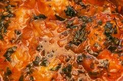 Красный овощной суп с концом предпосылки зеленых цветов вверх Стоковые Изображения