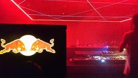 Красный логотип Bull в клубе Стоковая Фотография RF