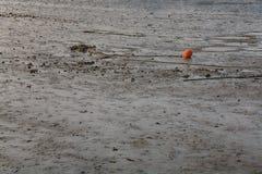 Красный оранжевый томбуй на пляже во время малой воды стоковые фотографии rf