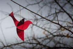 Красный орнамент птицы на ветви Хорошие обои с copyspace Стоковая Фотография