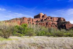 Красный парк штата Sedona утеса Стоковые Изображения RF