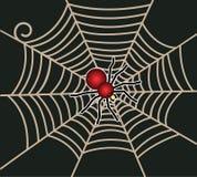Красный паук на сети Стоковые Изображения