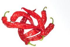 Красный перец Кайенны chili или чилей на белых грибах выреза предпосылки на деревянном конце взгляд сверху предпосылки вверх Стоковые Фото