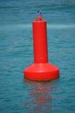 Красный предупреждающий томбуй Стоковое Фото